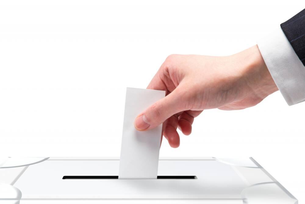 選挙には胡蝶蘭を。贈り方などのマナーまとめ【2021年版】